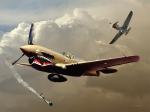 p 40 aircraft