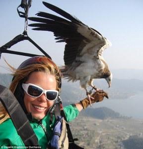 parahawk flying